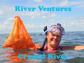 Crystal river scalloping with River Ventures