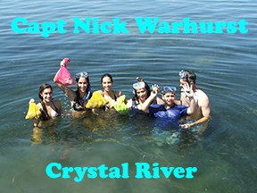 Crystal River scalloping with captain Nick