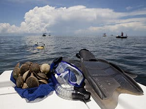 scalloping charters with blue heaven